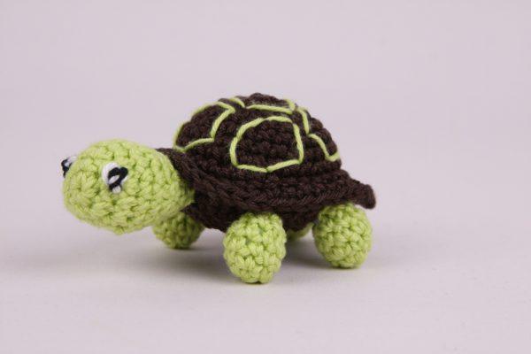 Schildpad-1
