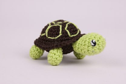 Schildpad-2